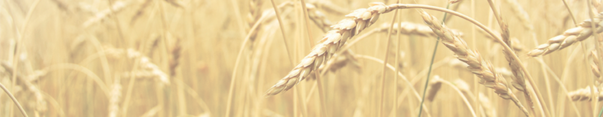 Wheat_Sponsor_Header