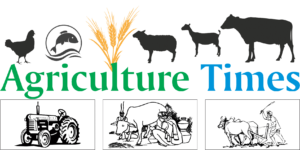 Agriculture_Times_TP