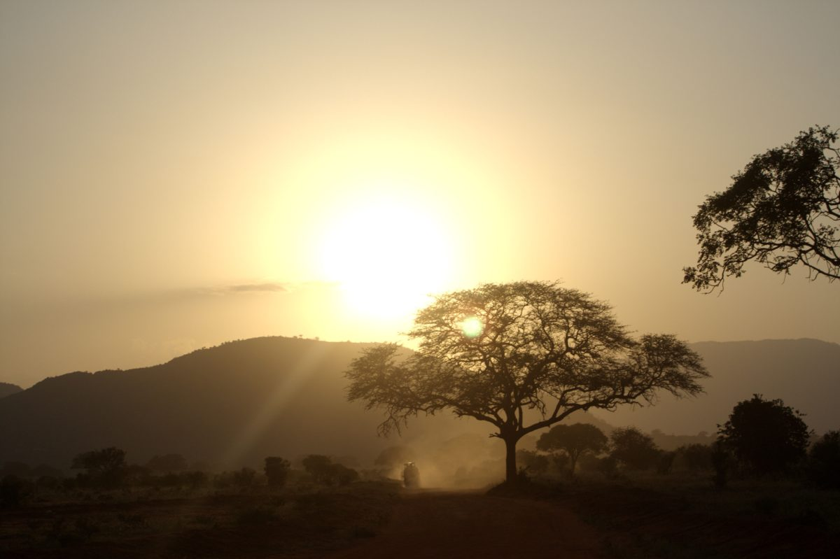 -absolutely_free_photos-original_photos-sunrise-in-the-africa-3906x2602_97674