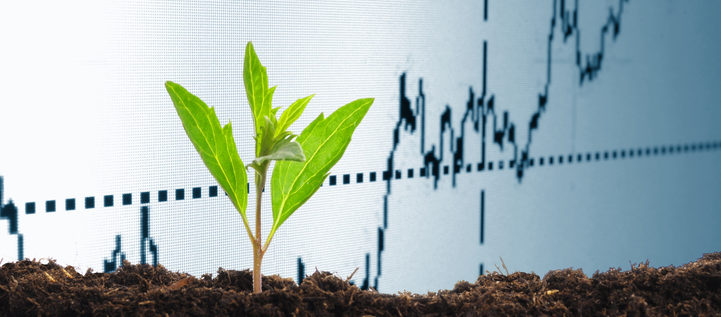 growth or growing economy concept with business chart and young plant